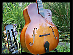 Favino_2010_Archtop_front